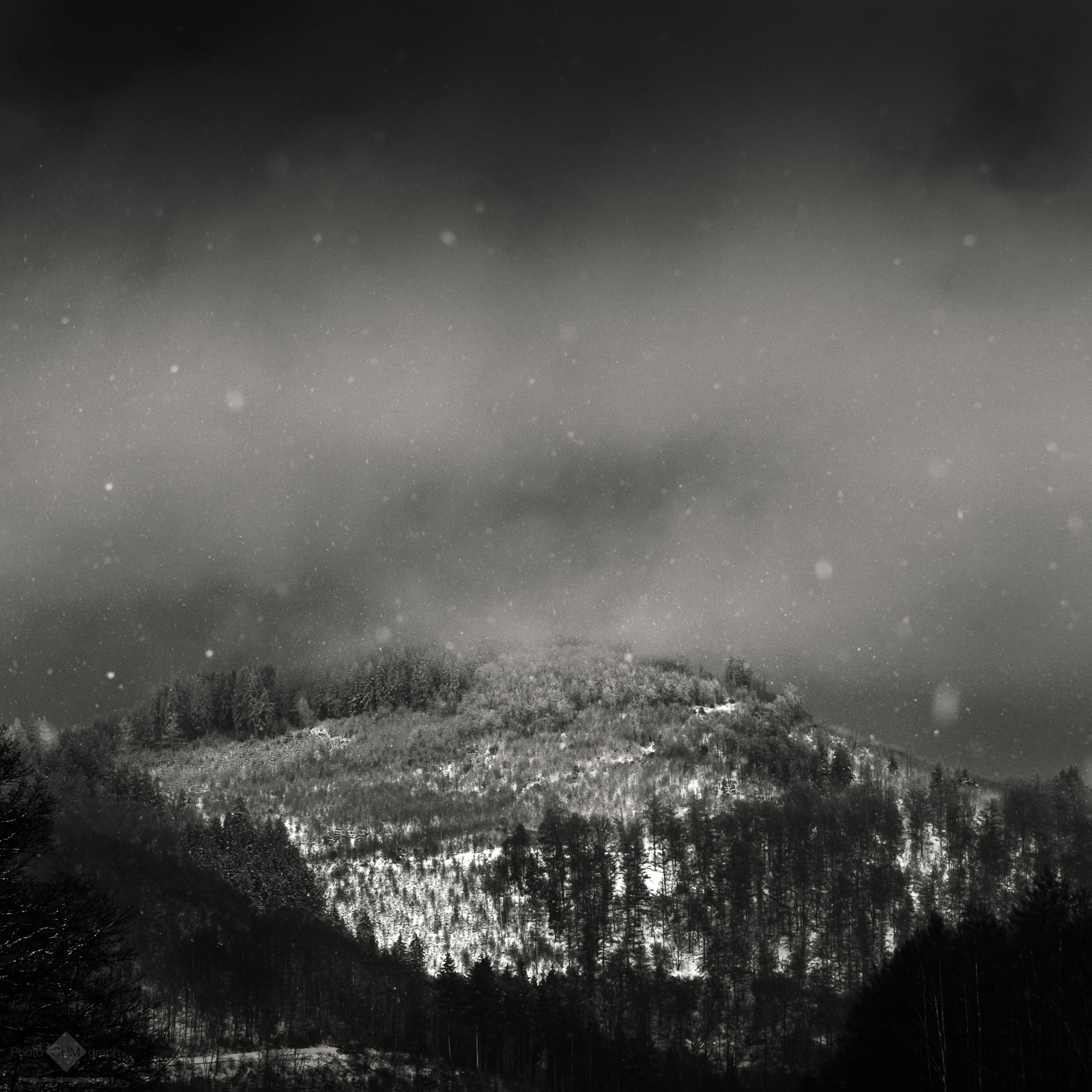 Snow (Winter #2)