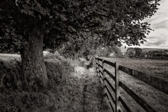 Near Rudchester Farm
