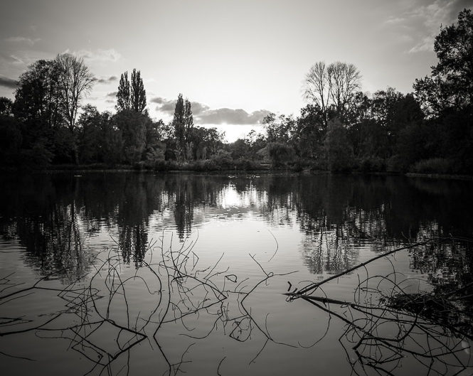 Lakeside Reflection #2