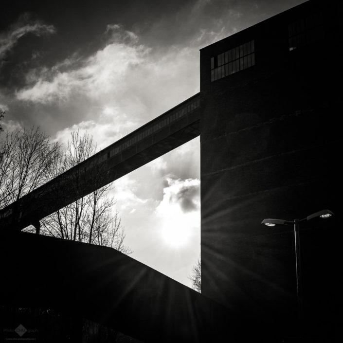 Zollverein Coal Mine Industrial Complex #42