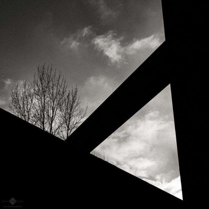 Zollverein Coal Mine Industrial Complex #43