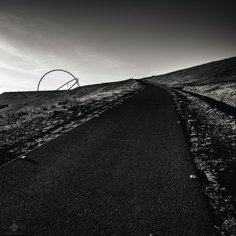 Horizon Observatory #5