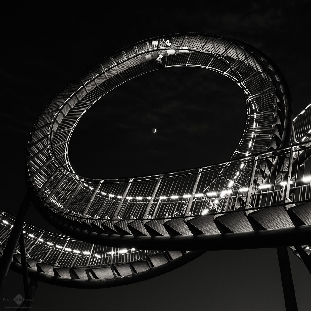 Looping I (Tiger & Turtle #23)