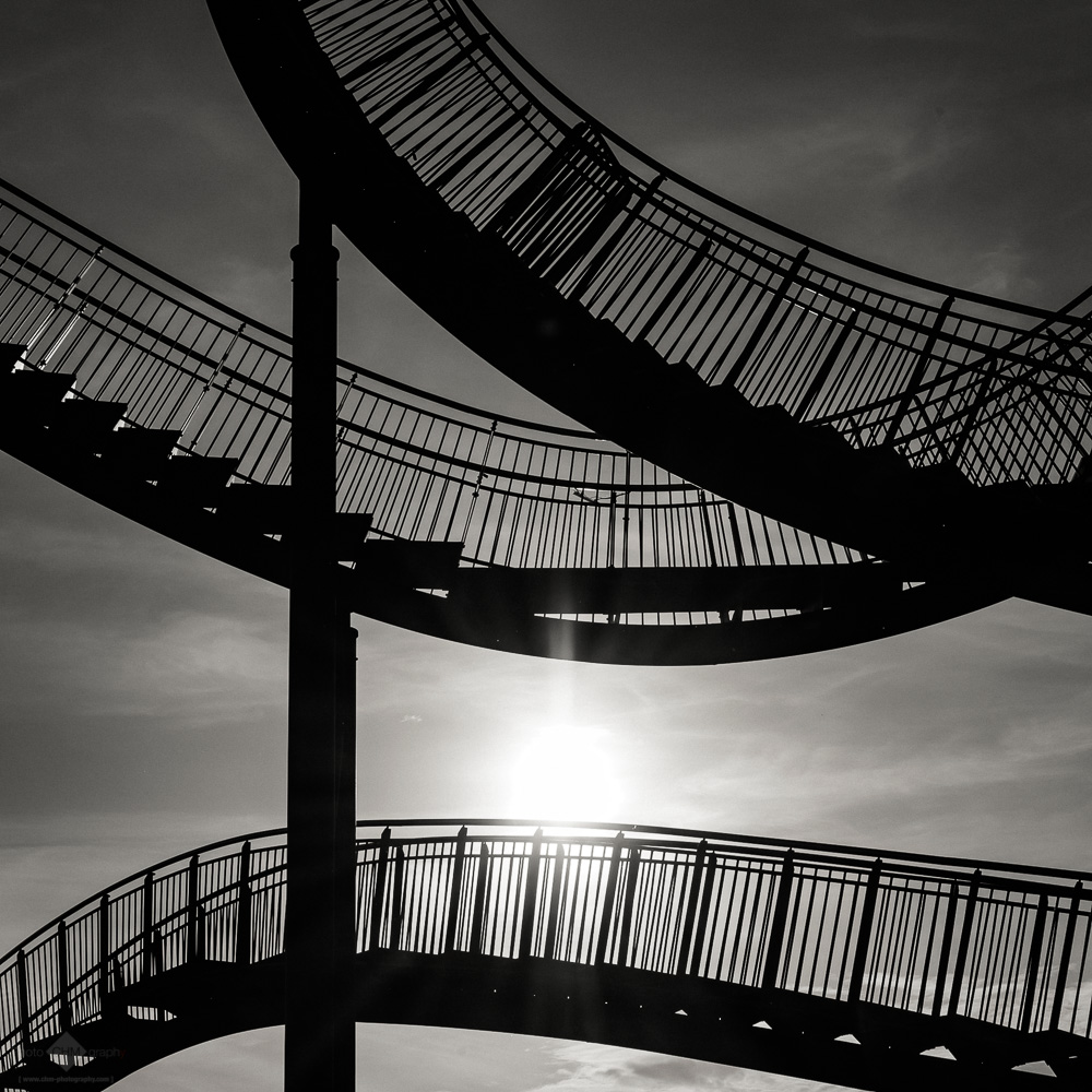 Separate Ways I (Tiger & Turtle #12)