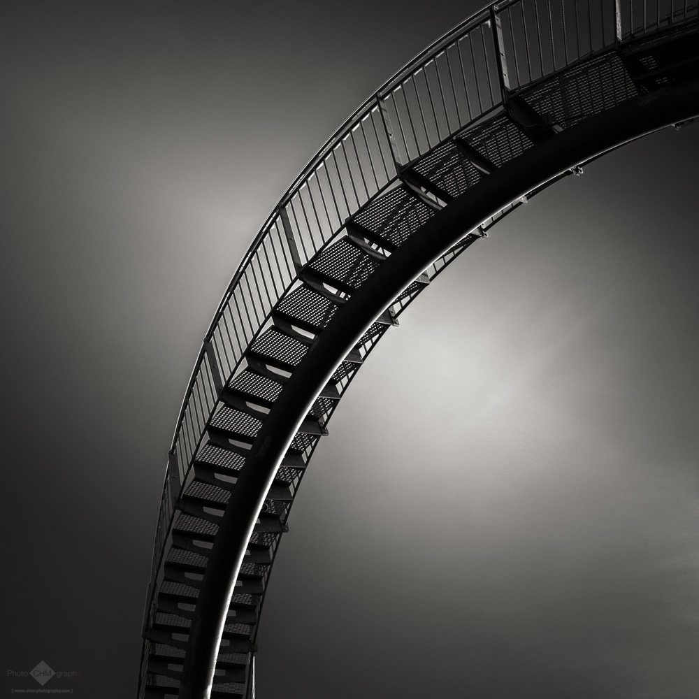Tiger & Turtle #14