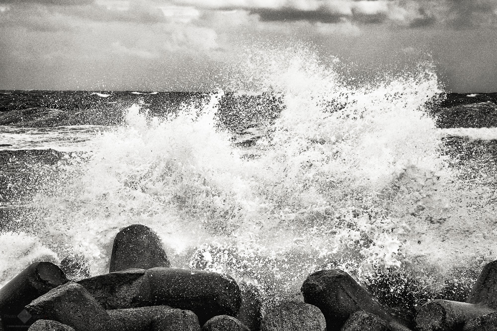 Splash (Tetrapods #1)