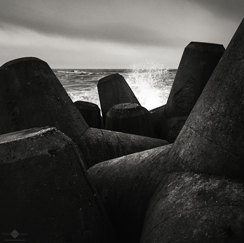 Coastal Protection (Tetrapods #2)